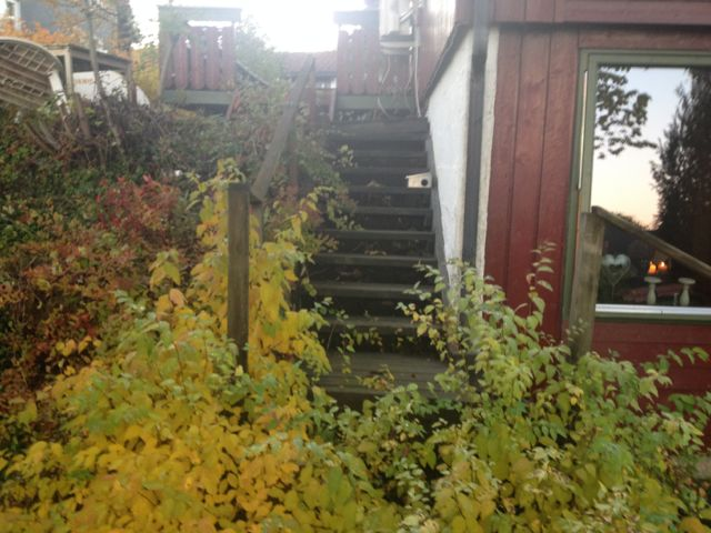 Gammel trapp skal få nytt liv